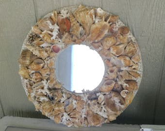 Old Seashell Mirror - Beach Cottage Decor - White and Beige Shells