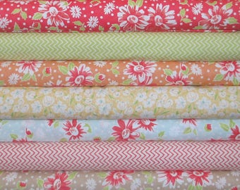 Coney Island Half Yard Fabric Bundle - Moda - Fig Tree & Co