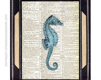 SEAHORSE art print wall decor natural science nautical marine sea ocean animal couple on vintage dictionary book page blue turquose 8x10,5x7