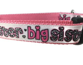 Dog Collar, Big Sister,  adjustable, 1 inch, medium, 15-22 inches, heavy nylon, quick release buckle
