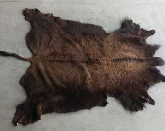 American Bison Hide- Buffalo Hide Soft Tanned Hair On Hide- Lot No. 25259TURQ