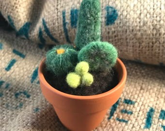 Perfectly potted felted cactus