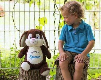 Bunny Rabbit Birth Announcement Baby Keepsake Plush Stuffed Animal Cubbie Personalized