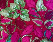Martha Negley, OOP, rare, Coleus, red, one yard