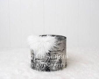 Boy Girl Winter Newborn Digital Photography Simple Backdrop White Tree Stump Bucket