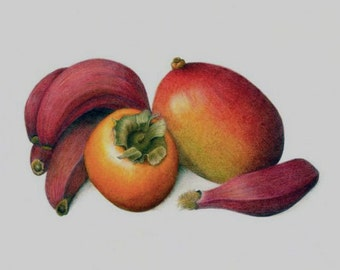 Tropical Fruit Still Life Giclee Print 8 x 10 inches