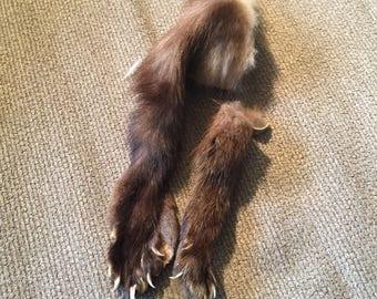 Fisher Legs