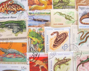 Witchsbrew 50 Vintage Modern Premium Reptiles Amphibians Postage Stamps Herpetology Frog Snake Lizard Croc Chameleon Natural History Biology