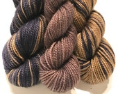 Shipwrecked Polar Opposites with Contrast... Canon Hand Dyes Charles Self Striping Superwash Sock Yarn