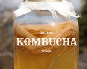 Organic Kombucha Mushroom • Free Shipping w/ 2nd Purchase