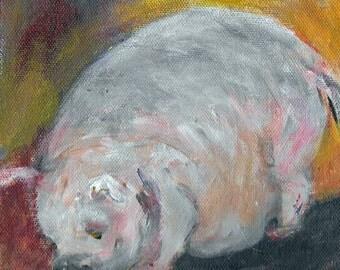 Original acrylic animal painting 6x6 Oliver Fat Pig Sun High Orchard