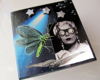 Jewelry Box Jean Harlow in Space Celestial Vintage Photos Dragonfly Butterfly Chameleon Fish Silver Stars Diatoms Wooden Swamp Gift Box