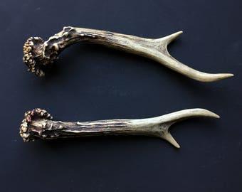 Horn Antler Set Bones Rustic Home Decor