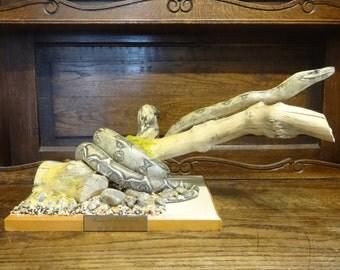 Vintage French Boa Snake Taxidermy Statue Figurine Ornament Decor circa 1980's / English Shop