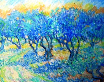 Sunlit path in a  Tuscan Olive Grove