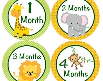 Baby Month Stickers Jungle Animal Zoo Safari Monthly Belly Labels with Elephant, Lion, Giraffe, & Monkey for Onesie Stickers 1 to 12 Months
