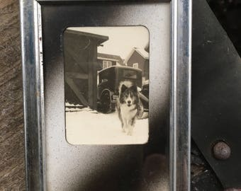 Antique small black and white photo huskie pup with antique vehicle in background