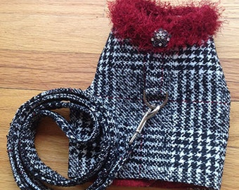 Harness vest and matching leash for Winter holiday