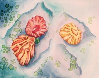 Seaside Creatures - Original Watercolor