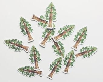 Sequoia Tree Die-Cut Window Decal