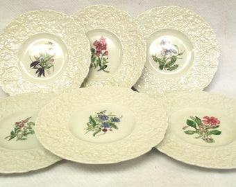 Royal Cauldon Woodstock Floral Plates, Set of 6 Various Flowers