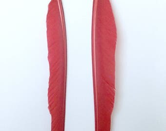 Duck Quill - Red