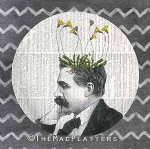 Pothead melamine plate, dandelion I, dictionary