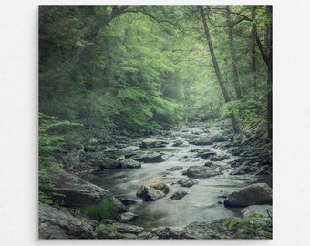 """Green Forest Wall Art Print 