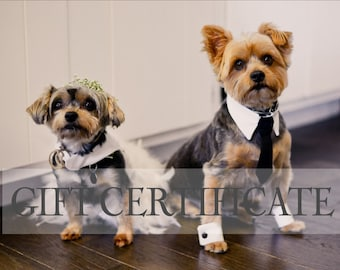Gift Certificate 25- Christmas Gift Idea, Email Gift Certificate, Gifts for Her, Gifts for Him, Dog Gift