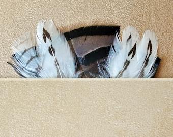 Men's Pocket Feather