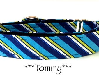 Martingale Dog Collar, Buckle Dog Collar, Dog Collar, Quick Release Dog Collar, Blue Stripes,Preppy, Tommy