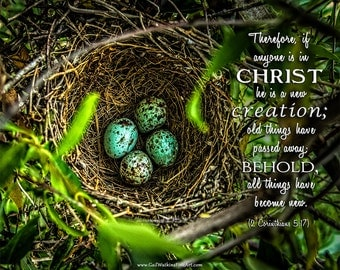 Bird Nest Photograph with Inspirational Text,  Mockingbird Nest, Scripture Art, Christian Fine Art Print or Canvas Wrap