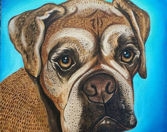 "Custom 12x12"" Acrylic Pet Portraits"