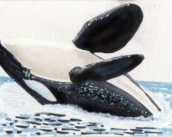 Breaching female orca - sketchcard/ACEO