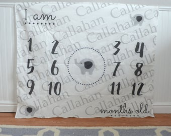 Personalized elephant first year monthly backdrop background birth announcement calendar