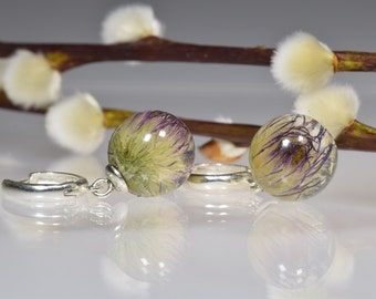Real flower terrarium earrings Ball shape earrings with real purple thistle blossom Resin jewelry