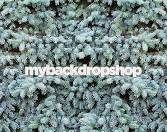 3ft x 3ft Fir Tree Photography Backdrop – Christmas Tree Backdrop for Pictures – Item 1784