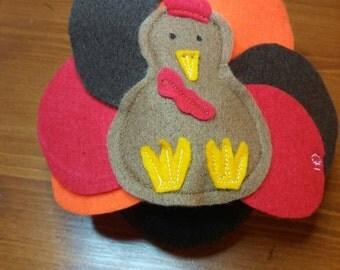 Thanksgiving costume (turkey)- Hedgehog/Guinea pig