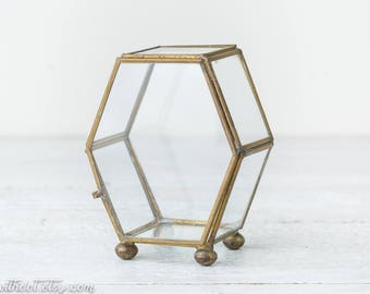 Vintage Gold Glass Box - Air Plant Terrarium - Glass Geometric Terrarium