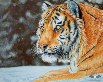 Siberian Snow - Original Signed Painting 24 x 30 inches