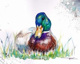 Original Watercolour Mallard Print by Artist Be Coventry Wildlife Animal Art