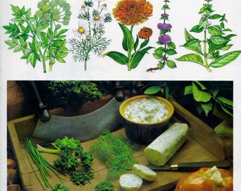 ISBN 0706403835 ,  A Modern Herbal: How to Grow, Cook and Use Herbs (Hardcover) Violet Stevenson