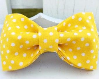 Dog Bow-Tie, Dog Leash, Dog Collar, Dog Collars, Yellow Dog Collar, Dot Dog Collar, Polka-Dot Dog Collar, Spring, Daisy-May Collection