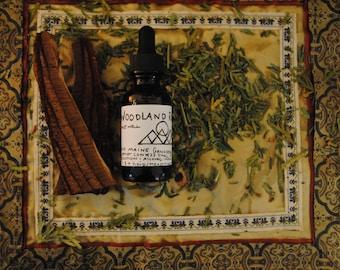 Wild Maine Woodlands Artist's Conk (Ganoderma applanatum) Dual Extract Tincture : 1 oz Bottle with Dropper