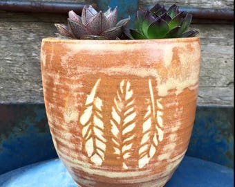 Succulent/Cactus Planter - 3 Feathers - Misty Caramel - Wheel Thrown Pottery