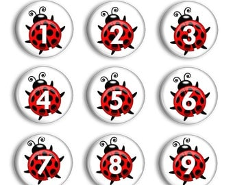 Ladybug  Number Magnets - Montessori Numbers  - Classroom Magnets - Teacher Gift - Learning Magnets - Homeschool - Preschool Counting