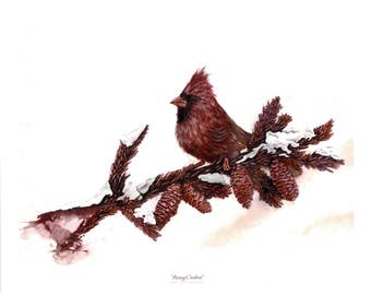 Painting created with Wine: Resting Cardinal
