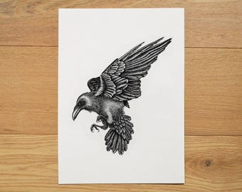 Raven illustration. Raven artwork. Black and white art. Raven print. Wildlife art. Animal illustration. Black Indian ink.