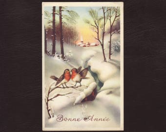 Robins in the snow, new year postcard - Birds, winter landscape, vintage holiday greeting card - ca 1960 (V5-44)