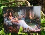 FOREST SERIES Postcard Set